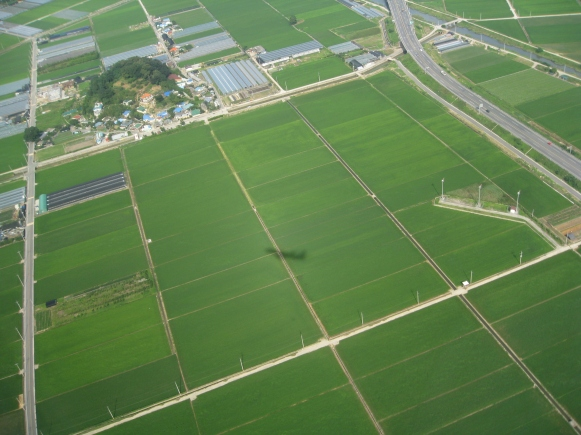 Flying in to Gimhae airport, over the rice paddies, Busan, South Korea