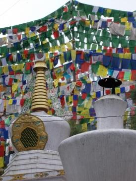 19 - Dharamsala 1